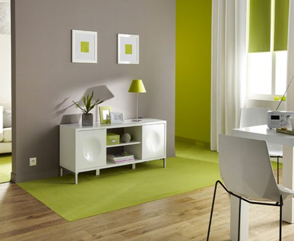 Quelle couleur choisir for Idee de decoration maison interieur
